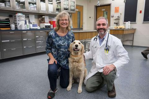 Dog with owner and doctor